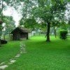 Tips for Caring for Your Yard